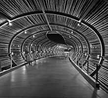 Bamboo walkway to mall in Corona, Ca. by philw