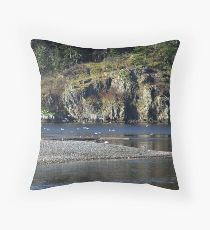 Safe Harbour For Gulls Throw Pillow