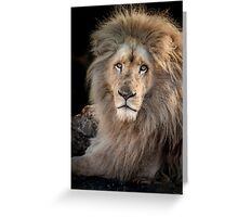 King Of The Jungle Greeting Card