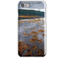 The Red Boat II iPhone Case/Skin