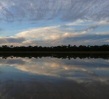 Feather Sky: Old Dam, Cobar, Queensland, Australia by linfranca