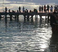 Silver Dolphin Dawn: Monkey Mia, Western Australia by linfranca