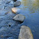 Water Step Lightly: Carnarvon Gorge, Queensland, Australia by linfranca