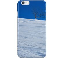 Waiting Out Winter iPhone Case/Skin