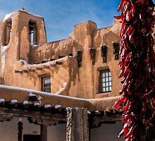 Adobe Courtyard by Tracy Riddell