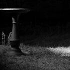 Melancholy Garden by antmason