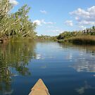 Gliding: Crossing Pool, Millstream Chichester National Park, Western Australia by linfranca