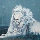 Letsatsi The White Lion by jane lauren