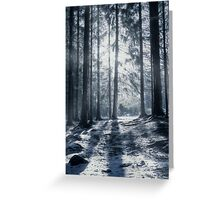"""Winter solstice"" Greeting Card"