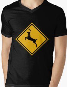 Baratheon Crossing 2 Mens V-Neck T-Shirt