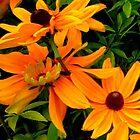 """Flowers 5"" by Chip Fatula by njchip123"