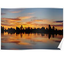Early morning on small lake Poster
