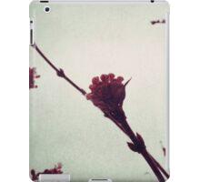 Winter Blossom I iPad Case/Skin