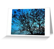 """Trees with Blue Sky"" Greeting Card"