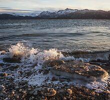 Icy Alaskan Beach by mcornelius