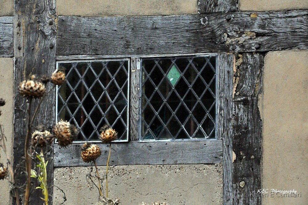 The Bard's Window by Karen E Camilleri