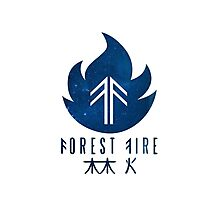 Forest Fire - Stars Photographic Print
