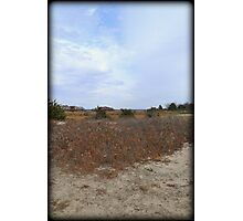 Color Dune Photographic Print