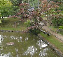 Lake in park in Japan by pisarevg