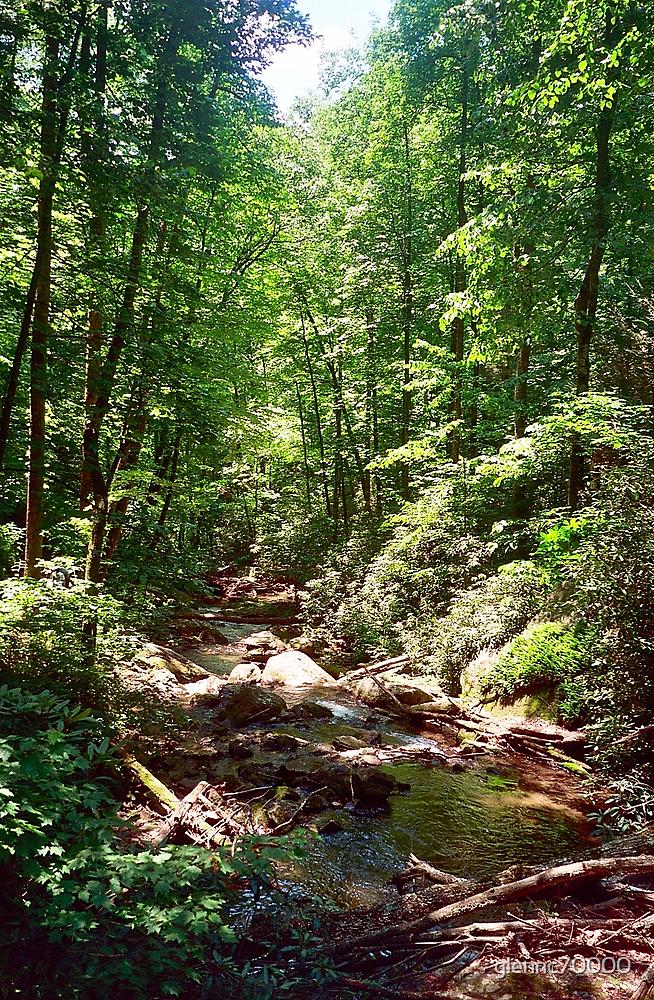 Below the Falls - Anna Ruby, Georgia by Glenn Cecero