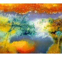 Reflect (Belvade Jasper) Photographic Print