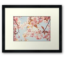 Cherry dream Framed Print