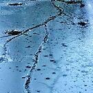 Frozen Reflections 11 by Xoanxo