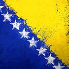 Bosnian Flag - Magnaen Flag Collection 2013 by GrizzlyGaz