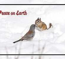 Peace on Earth by Tracy Riddell