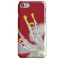 Red Rain iPhone Case/Skin