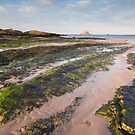 North Berwick Evening Light by Christopher Cullen