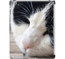 Cat-Woman iPad Case/Skin