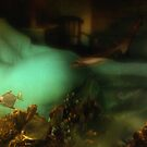 FISHIE DREAM by scarletjames