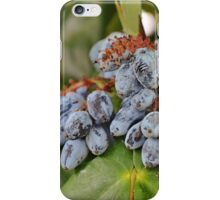 Mahonia iPhone Case/Skin
