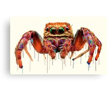 Spider Psychedelic Canvas Print
