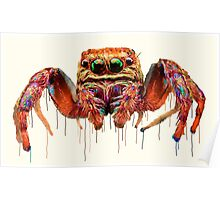 Spider Psychedelic Poster