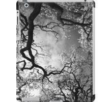 Sheltering Sky iPad case iPad Case/Skin