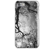 Sheltering Sky iPhone Case iPhone Case/Skin