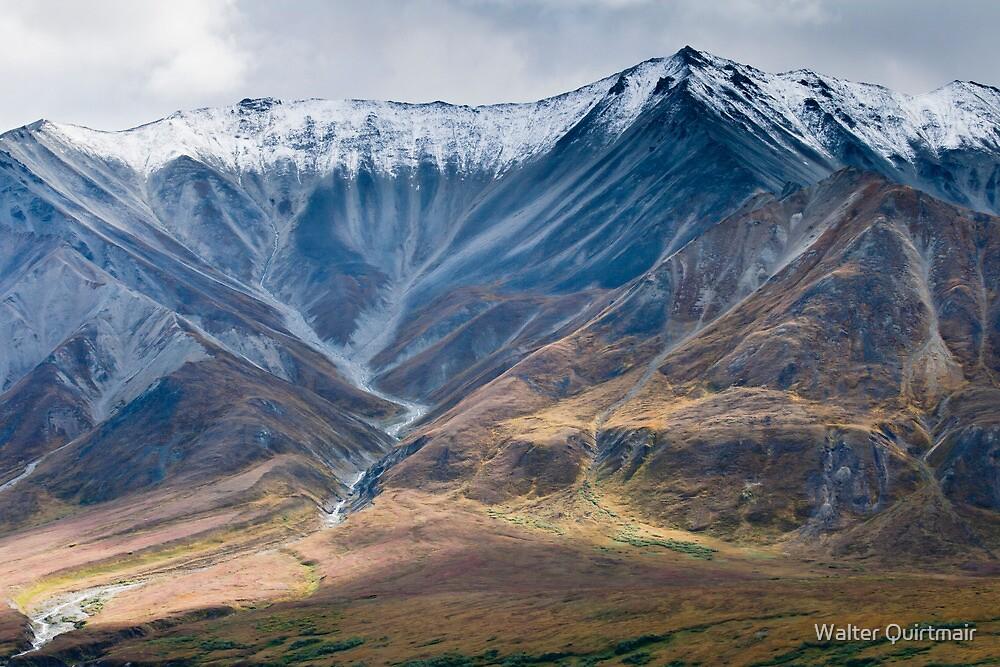 Denali, Alaska by Walter Quirtmair
