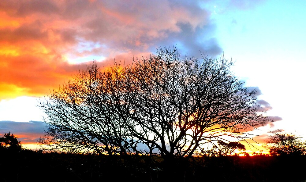African Sky in Scotland by ©The Creative  Minds