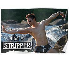 I'm a Stripper - Suntory Poster