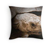Old Man Tortoise  Throw Pillow