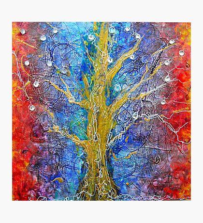 Albedo  Tree of Life 8 Photographic Print