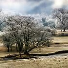 Frosty Valley by Simon Harris
