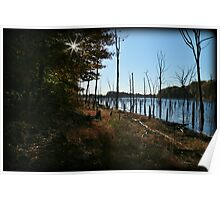Evening Autumn Cove Poster