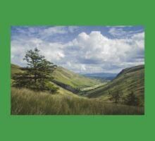 Glengesh Pass, Co. Donegal Kids Tee