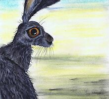HARES & OTHER CRITTERS by Hares and Critters