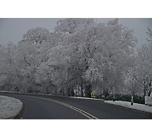 Winter Wonderland.. Photographic Print
