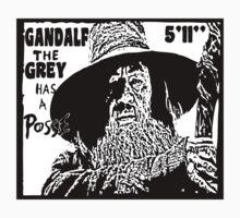 Gandalf Has A Posse Kids Clothes