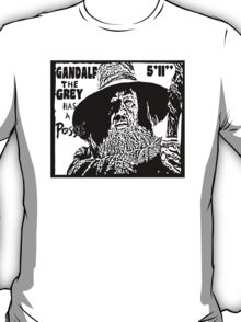 Gandalf Has A Posse T-Shirt